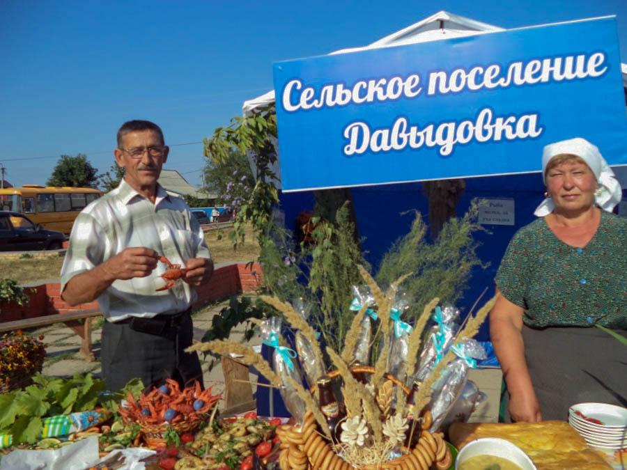 Сельское поселение Давыдовка