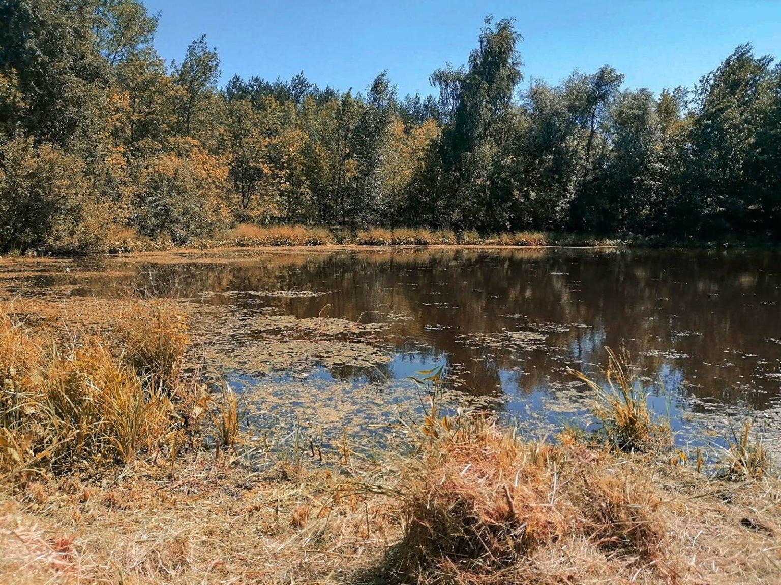 Немое озеро в деревне Якобьевка
